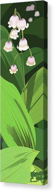 Lily Of The Valley Canvas Print by Marian Federspiel