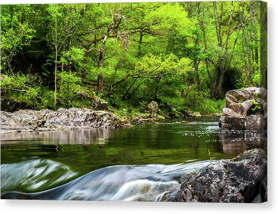 Linn Of Tummel Canvas Print by David Ross