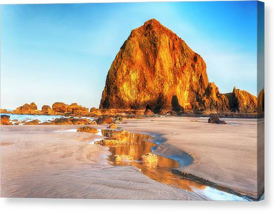 Canvas Print featuring the photograph Liquid Gold Path At Low Tide by Dee Browning