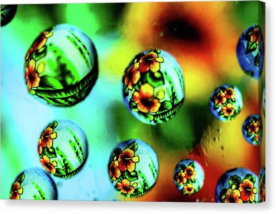Liquid Lenses Canvas Print