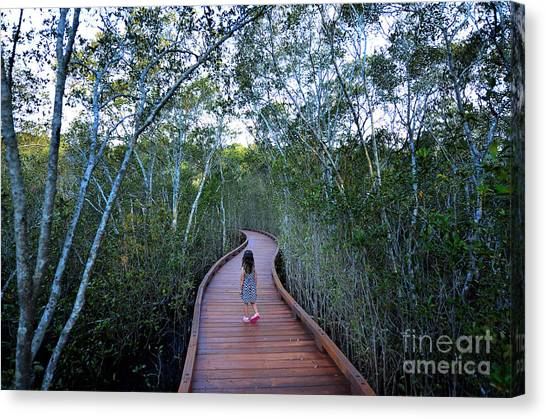 See Canvas Print - Little Girl Age 04 Visit In Coombabah by Chameleonseye