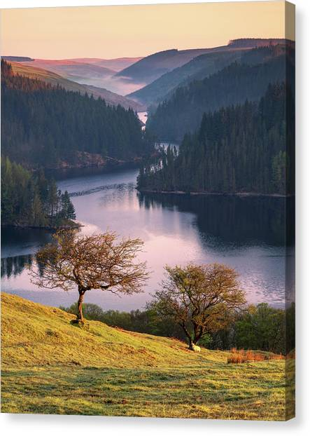 Canvas Print featuring the photograph Llyn Brianne Sunrise by Elliott Coleman