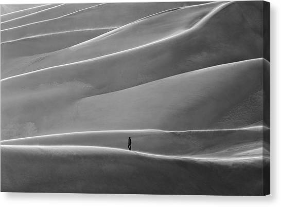 Canvas Print featuring the photograph Lone Sand Trekker by Rand