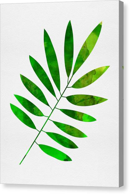 Cacti Canvas Print - Lonely Leaf by Naxart Studio