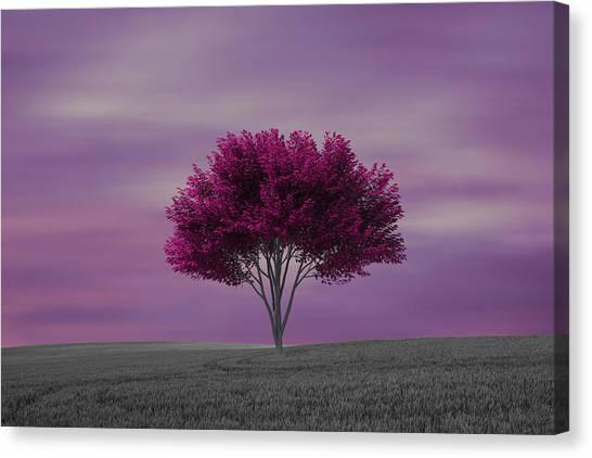 Lonely Tree At Purple Sunset Canvas Print