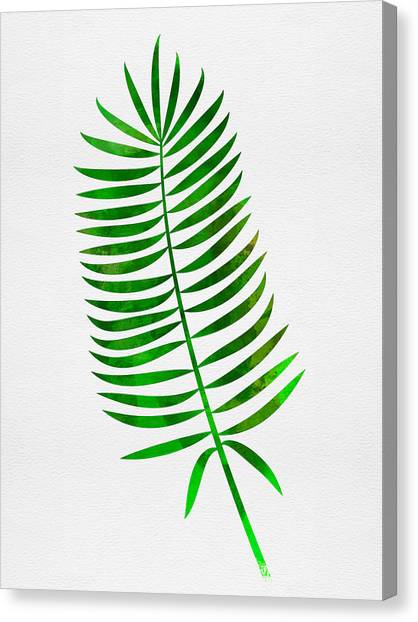 Cacti Canvas Print - Lonely Tropical Leaf I by Naxart Studio