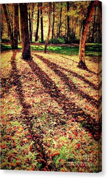 Long Autumn Shadows In The Blue Ridge Canvas Print by Dan Carmichael
