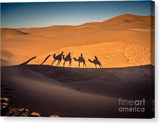 Caravan Canvas Print - Long Shadows Of Camel Caravan In The by Luisa Puccini