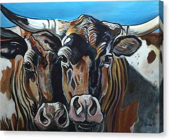 Longhorns, Interrupted Canvas Print