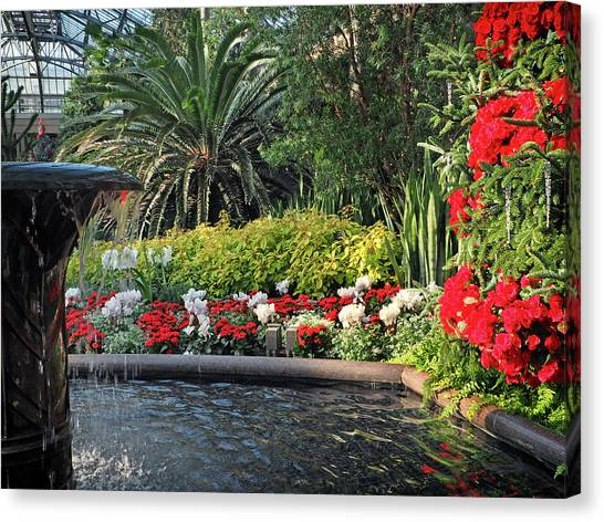 Canvas Print featuring the photograph Christmas Colors In Plants by Bill Swartwout Fine Art Photography