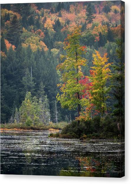 Loon Lake Canvas Print