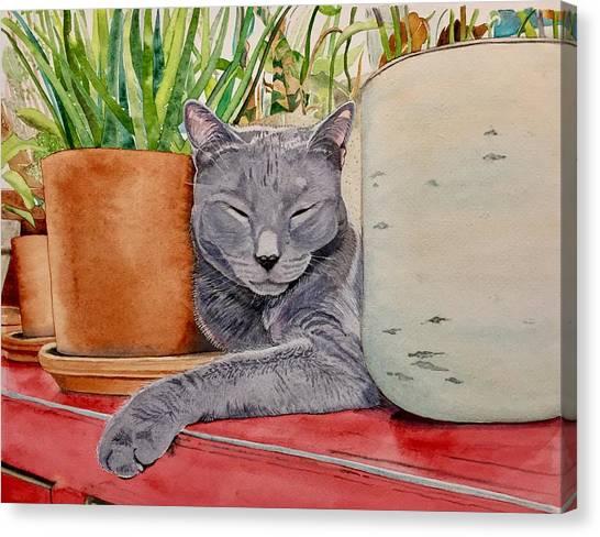 Louie In An Urban Jungle Canvas Print