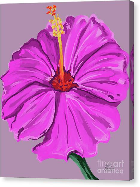 Lovely Pink Hibiscus Canvas Print