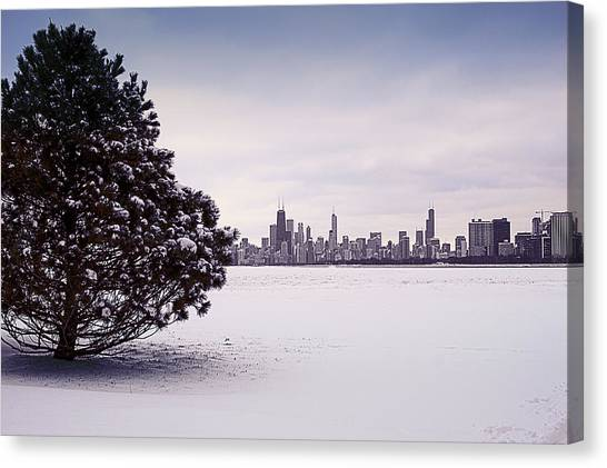 Canvas Print featuring the photograph Lovely Winter Chicago by Milena Ilieva