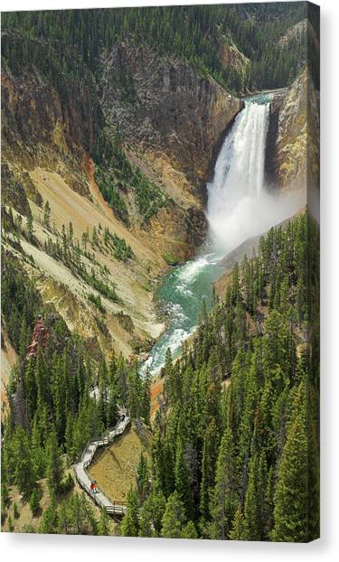 Lower Falls On The Yellowstone River Canvas Print by Neale Clark / Robertharding