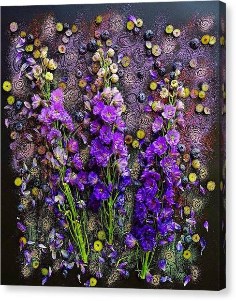 Lupine And Blueberries  Canvas Print