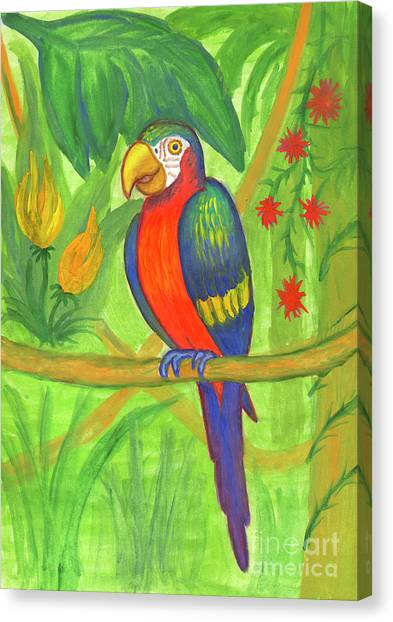 Macaw Parrot In The Wild Canvas Print