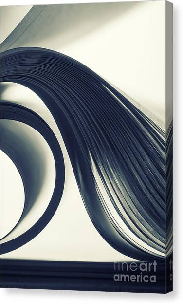 Form Canvas Print - Macro View Of Abstract Paper Curves by Nomad soul