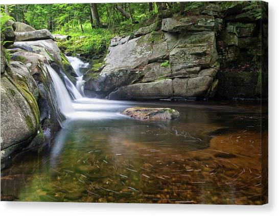 Canvas Print featuring the photograph Mad River Falls by Nathan Bush