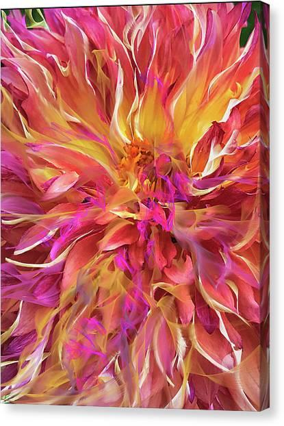 Magenta Sunshine Canvas Print