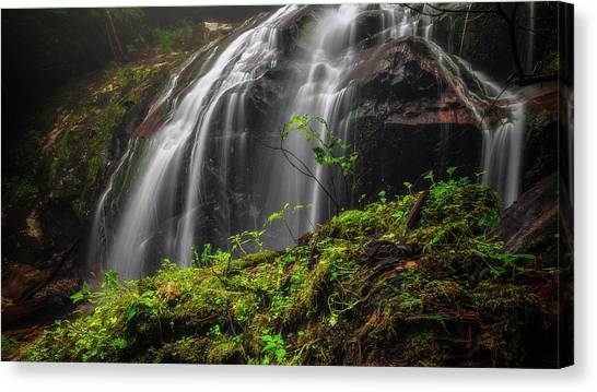 Magical Mystical Mossy Waterfall Canvas Print