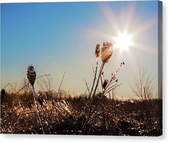 Canvas Print featuring the photograph Magical Star Of Light And Ice by Tatiana Travelways