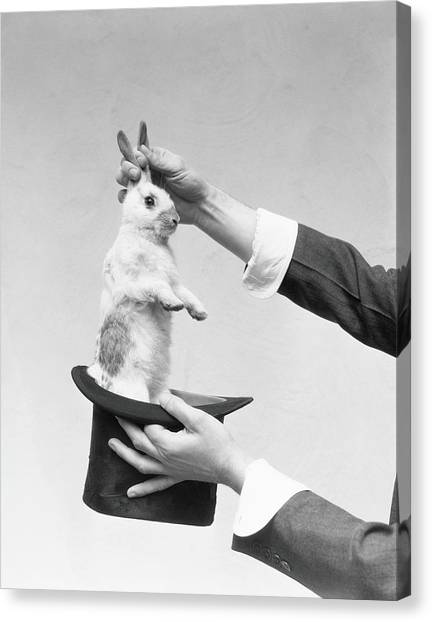 Magician Pulling Rabbit Out Of Hat Canvas Print by H. Armstrong Roberts
