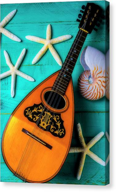 Mandolins Canvas Print - Mandolin And White Starfish by Garry Gay