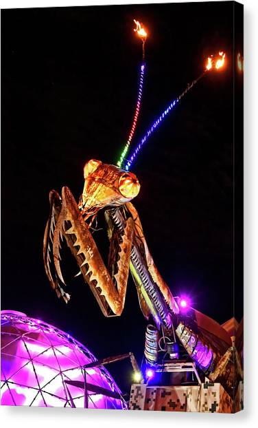 Canvas Print featuring the photograph Mantis by Skip Hunt