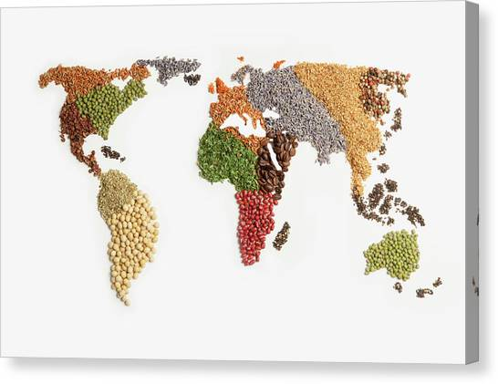 Map Of World Made Of Various Seeds Canvas Print by Imagemore Co, Ltd.
