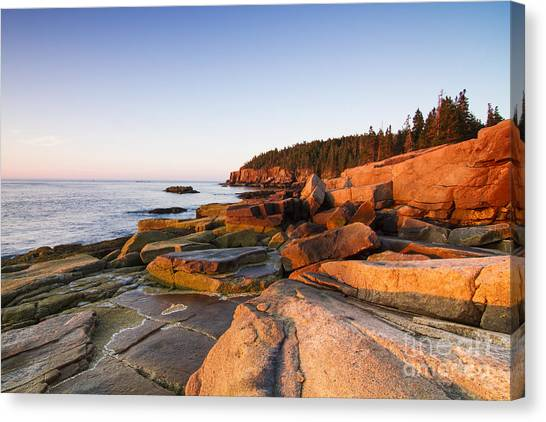 Tides Canvas Print - Marine Landscape In Acadia, Park Loop by Mircea Costina