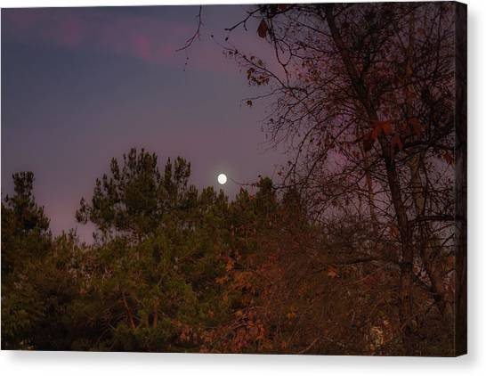 Canvas Print featuring the photograph Marvelous Moonrise by Alison Frank