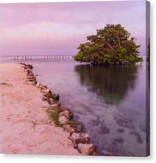 Mayan Sea Reflection 2 Canvas Print