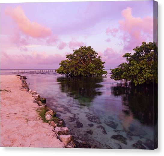 Mayan Sea Reflection Canvas Print