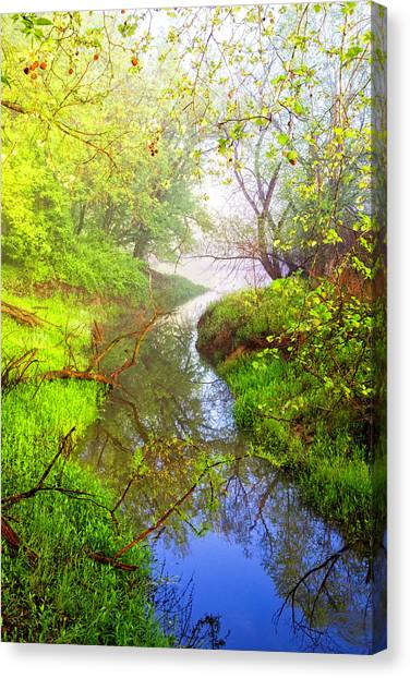 Canvas Print - Meandering Through The Forest Glen by Debra and Dave Vanderlaan