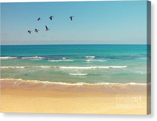 Mediterranean Sea And Sand Beach Canvas Print by Protasov An