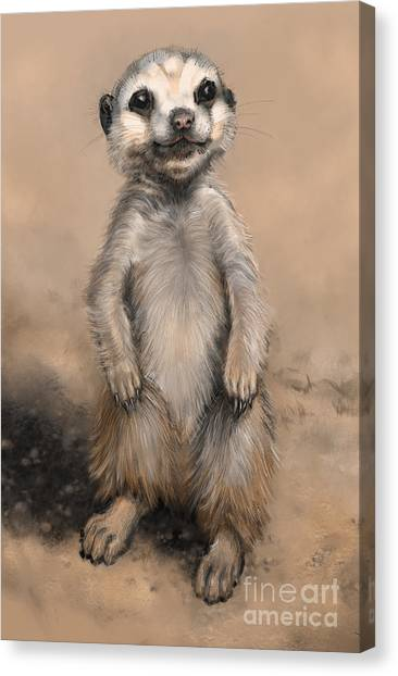 Meercat Canvas Print