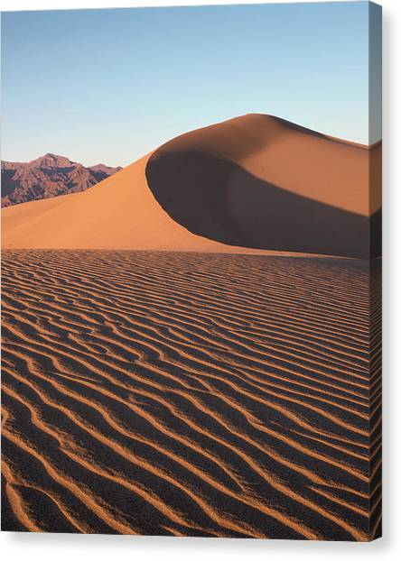 Mesquite Dunes 1-v Canvas Print