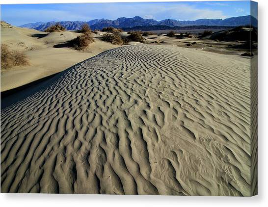 Mesquite Flat Sand Dunes Grapevine Mountains Canvas Print