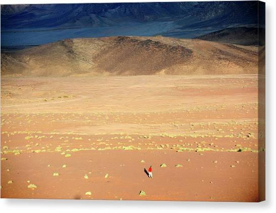 Middle East,jordan,man Walking In A Canvas Print by Frédéric Soreau