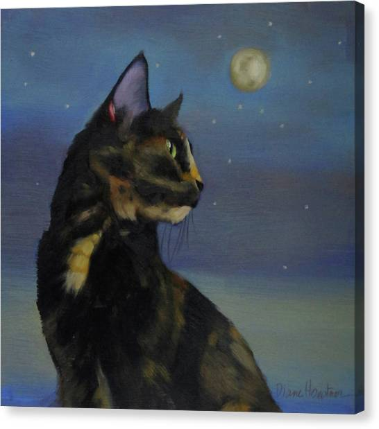 Mighty Tortie Canvas Print by Diane Hoeptner
