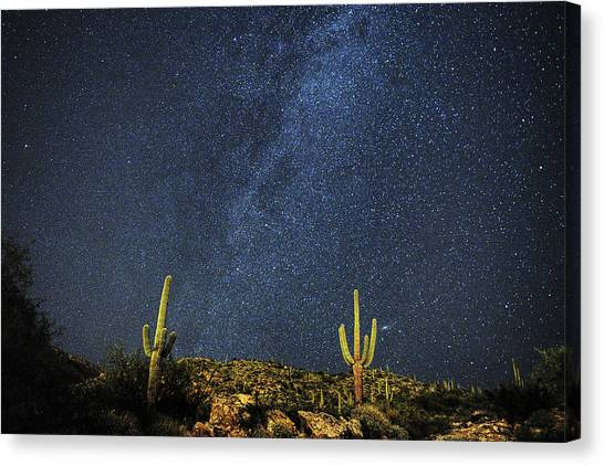 Milky Way And Cactus Canvas Print