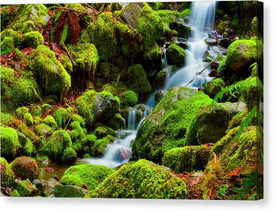 Mini Cascading Waters Canvas Print