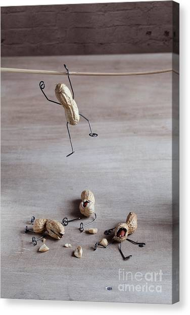 Figurine Canvas Print - Miniature With Peanut People Trying To by Nailia Schwarz