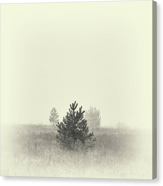 Canvas Print featuring the photograph Mist In The Valley. Horytsya, 2018. by Andriy Maykovskyi