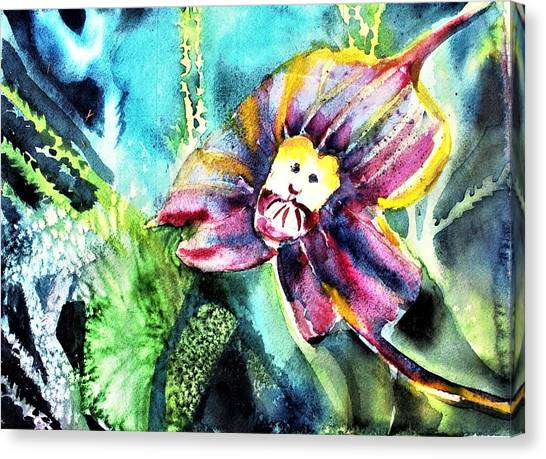 Canvas Print - Monkey Face Orchid by Mindy Newman
