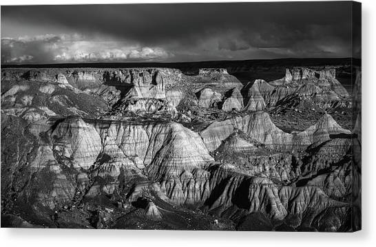 Petrified Forest Canvas Print - Monochrome Evening by Joseph Smith
