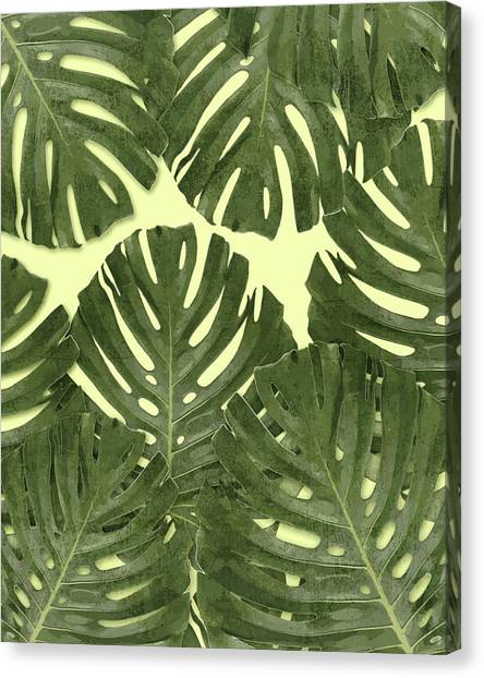 Blossom Canvas Print - Monstera Leaf Pattern - Tropical Leaf Pattern - Green - Tropical, Botanical - Modern, Minimal Decor by Studio Grafiikka