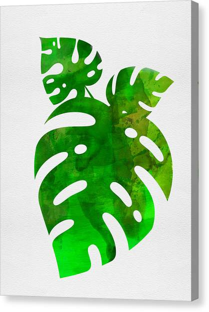 Cacti Canvas Print - Monstera Leafs by Naxart Studio