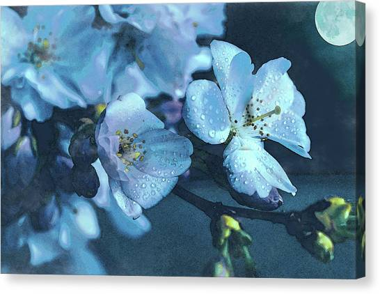 Moonlit Night In The Blooming Garden Canvas Print
